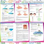 Ciencia en preescolar manual de experimentos