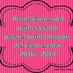 Planeaciones del primer grado para el quinto bloque del ciclo escolar 2016 – 2017