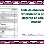 Guía de observación y reflexión de la práctica docente en colectivo escolar