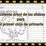 Excelente árbol de las sílabas para el primer ciclo de primaria