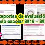 Reportes de evaluación de todos los grados ciclo escolar 2018 – 2019 de primaria