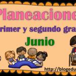 Planeaciones del primer y segundo grado del mes de junio del tercer trimestre ciclo escolar 2018 – 2019
