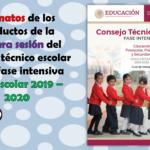 Formatos de los productos de la primera sesión del consejo técnico escolar de la fase intensiva ciclo escolar 2019 – 2020