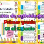 Guion de actividades para el primer grado de primaria del 01 al 12 de junio