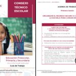 Guía de la Fase Intensiva de CTE Educación Preescolar, Primaria y Secundaria Ciclo escolar 2020-2021