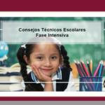 Consejo técnico escolar fase intensiva planeación 2020 – 2021