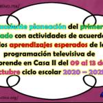 Excelente planeación del primer grado con actividades de acuerdo a los aprendizajes esperados de la programación televisiva de Aprende en Casa II del 09 al 13 de noviembre ciclo escolar 2020 – 2021