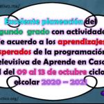 Excelente planeación del segundo grado con actividades de acuerdo a los aprendizajes esperados de la programación televisiva de Aprende en Casa II del 09 al 13 de noviembre ciclo escolar 2020 – 2021