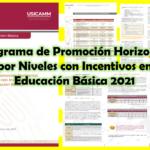 Programa de Promoción Horizontal por Niveles con Incentivos en Educación Básica 2021