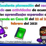 Excelente planeación del sexto grado con actividades de acuerdo a los aprendizajes esperados de Aprende en Casa III del 22 al 26 de febrero del 2021